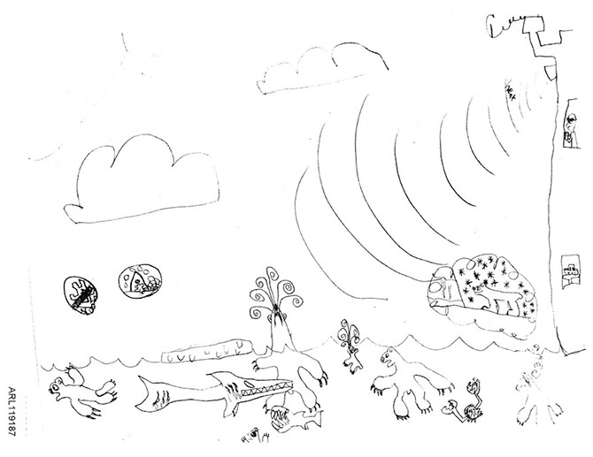 Natural Ecosystem Drawing Included This Drawing of a